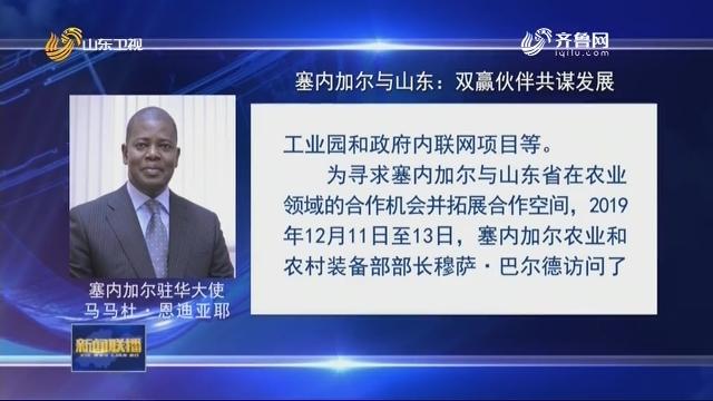 【驻华大使话山东】塞内加尔与山东:双赢伙伴共谋发展