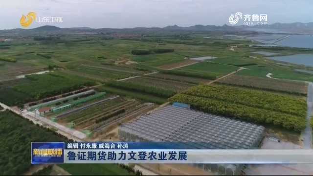 鲁证期货助力文登农业发展