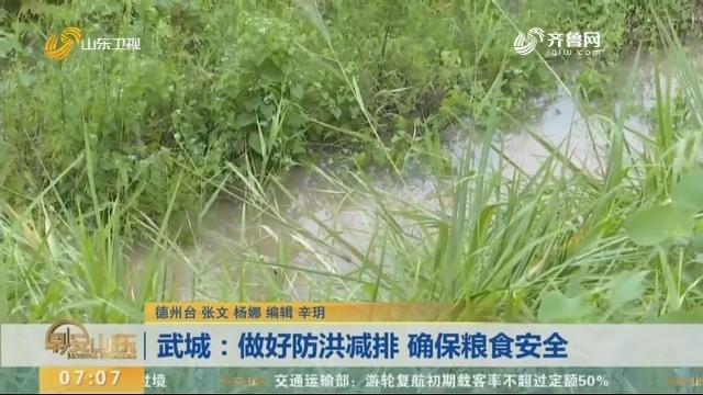 武城:做好防洪减排 确保粮食安全