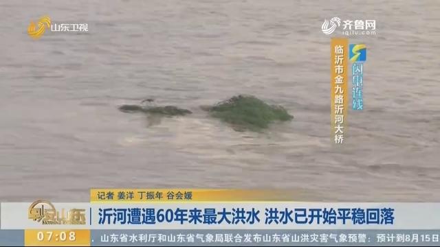 【闪电连线】沂河遭遇60年来最大洪水 洪水已开始平稳回落