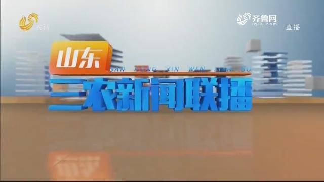 2020年08月16日山东三农新闻联播完整版