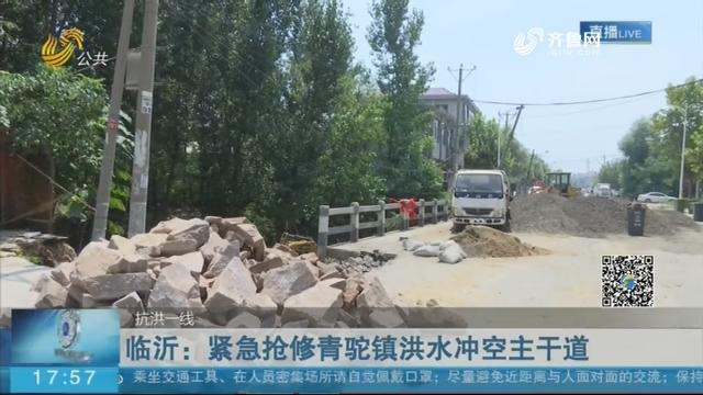 临沂:紧急抢修青驼镇洪水冲空主干道