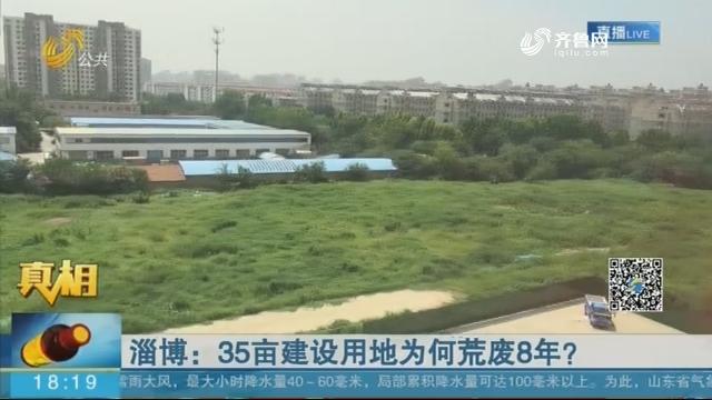 淄博:35亩建设用地为何荒废8年?