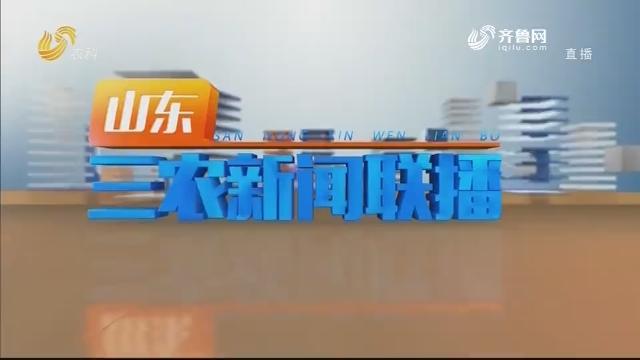 2020年08月19日山东三农新闻联播完整版