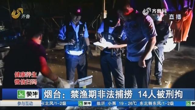 烟台:禁渔期非法捕捞 14人被刑拘