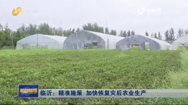 临沂:精准施策 加快恢复灾后农业生产