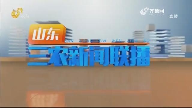 2020年08月28日山东三农新闻联播完整版