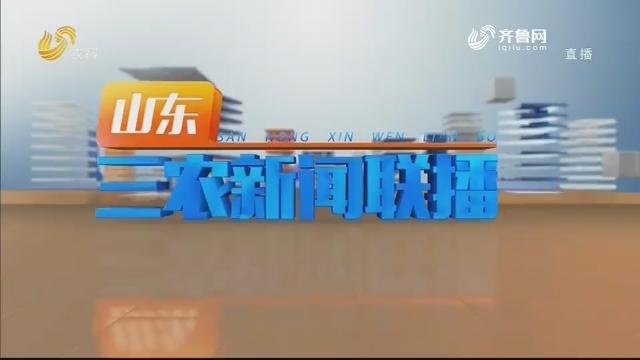 2020年08月30日山东三农新闻联播完整版