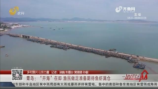 """【乡村振兴 山东力量】青岛:""""开海""""在即 渔民做足准备期待鱼虾满仓"""