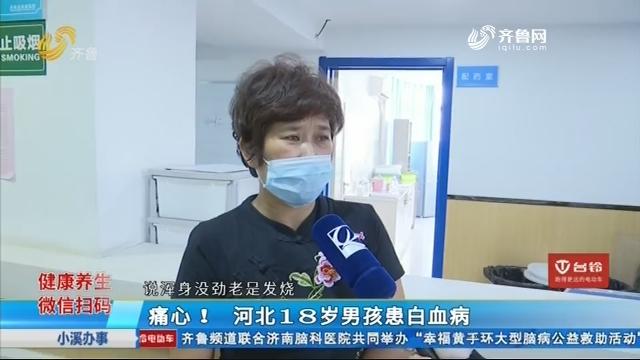 痛心!河北18岁男孩患白血病