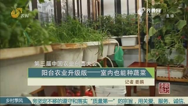 【第三届中国农业创富大会】阳台农业升级版——室内也能种蔬菜