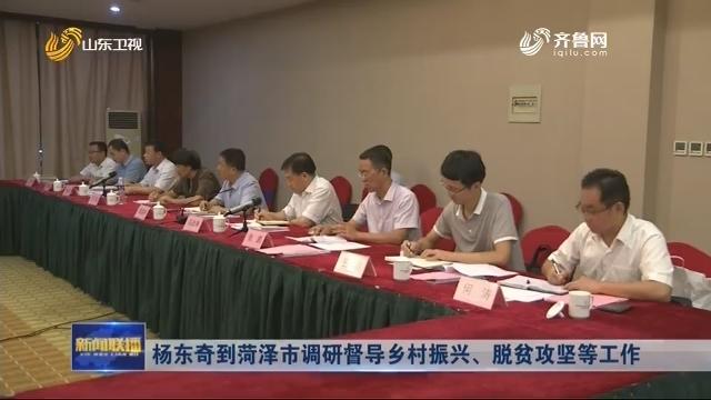 杨东奇到菏泽市调研督导乡村振兴、脱贫攻坚等工作