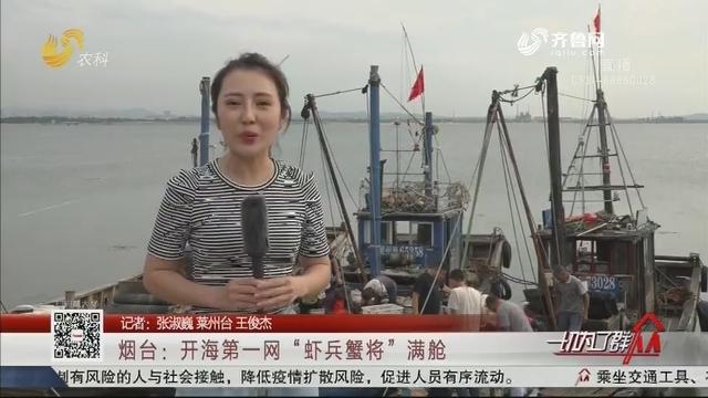 """烟台:开海第一网""""虾兵蟹将""""满舱"""
