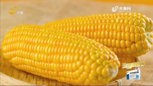 2020年09月07日《生活大调查》:吃玉米能减肥?