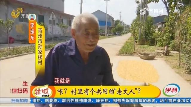 """青州:咋?村里有个共同的""""老丈人""""?"""