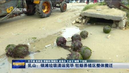 【问政山东·追踪】乳山:银滩垃圾清运完毕 牡蛎养殖区整体搬迁