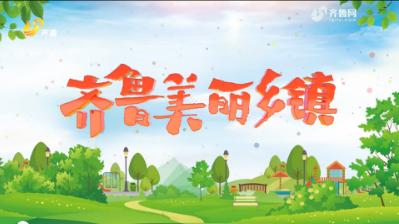 《齐鲁美丽乡镇》第二期:东营市广饶县大王镇