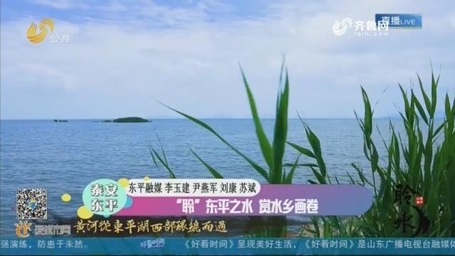 """东平:""""聆""""东平之水 赏水乡画卷"""