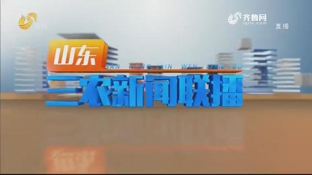 2020年09月15日山东三农新闻联播完整版
