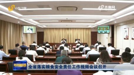 全省落实粮食安全责任工作视频会议召开
