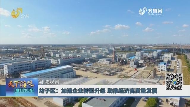 【县域观察】坊子区:加速企业转型升级 助推经济高质量发展