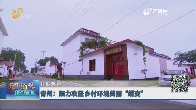 """【县域观察】青州:聚力攻坚乡村环境美丽""""蝶变"""""""