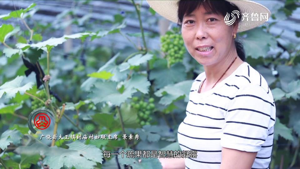 广饶《惜食有食》宣传片