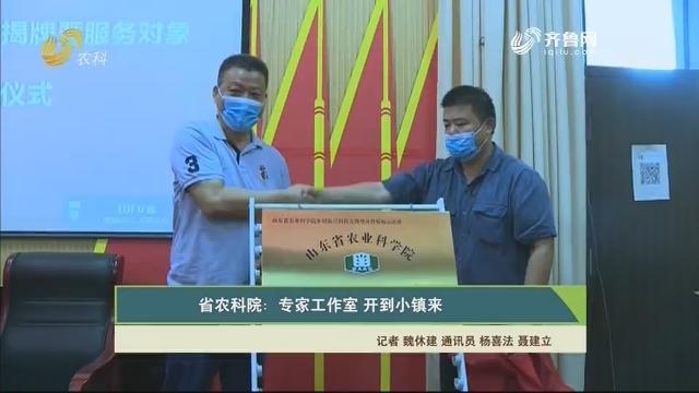 【齐鲁畜牧】省农科院:专家工作室 开到小镇来