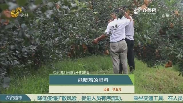 【2020中国农业创富大会精彩回眸】能喂鸡的肥料