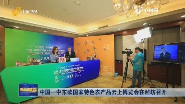 中国—中东欧国家特色农产品云上博览会在潍坊召开