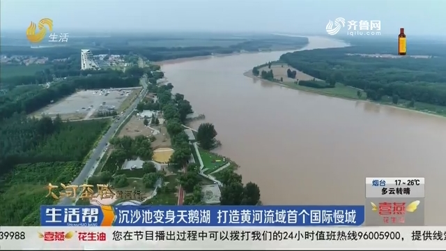 沉沙池变身天鹅湖 打造黄河流域首个国际慢城