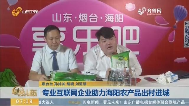 专业互联网企业助力海阳农产品出村进城