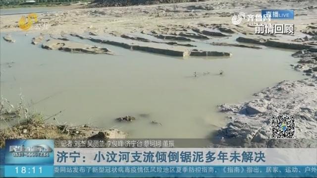 济宁:小汶河支流倾倒锯泥多年未解决