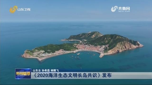 《2020海洋生态文明长岛共识》发布