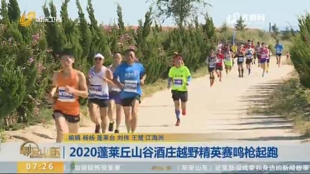 2020蓬莱丘山谷酒庄越野精英赛鸣枪起跑