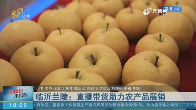 临沂兰陵:直播带货助力农产品展销