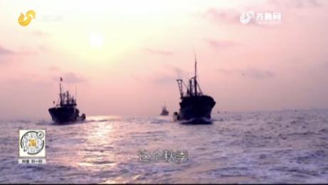 20200921《此时此刻》:码头渔歌