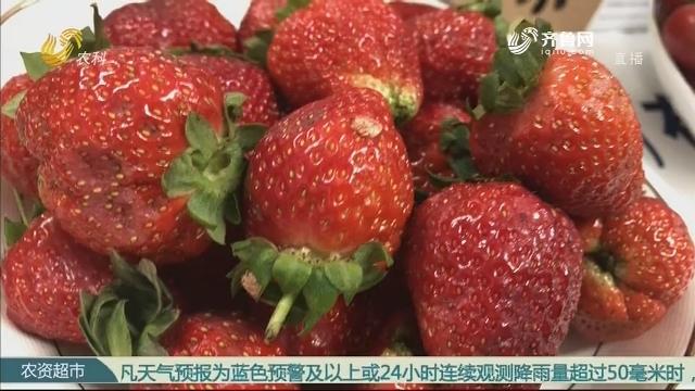 【第三届中国农业创富大会精彩回眸】艾森贝克亮相中国农业创富大会