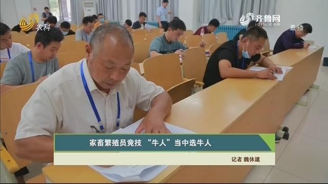 """【齐鲁畜牧】家畜繁殖员竞技 """"牛人""""当中选牛人"""