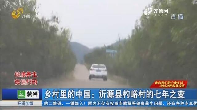 乡村里的中国:沂源县杓峪村的七年之变