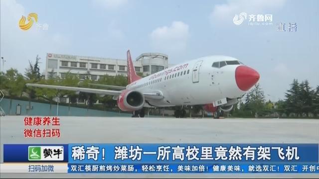 稀奇!潍坊一所高校里竟然有架飞机