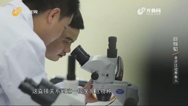 20200926完整版|曲焕韬:金沙江边养鱼人