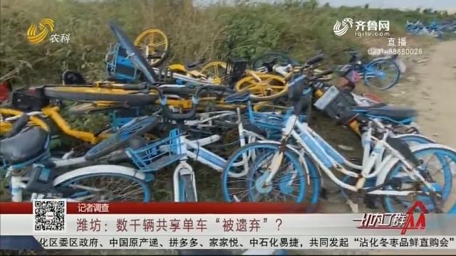 """【记者调查】潍坊:数千辆共享单车""""被遗弃""""?"""