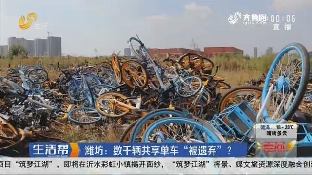 """潍坊:数千辆共享单车""""被遗弃""""?"""