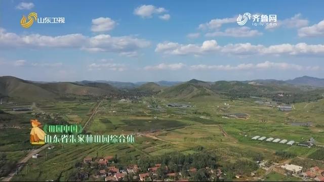 20200927《田园中国》:山东省朱家林田园综合体