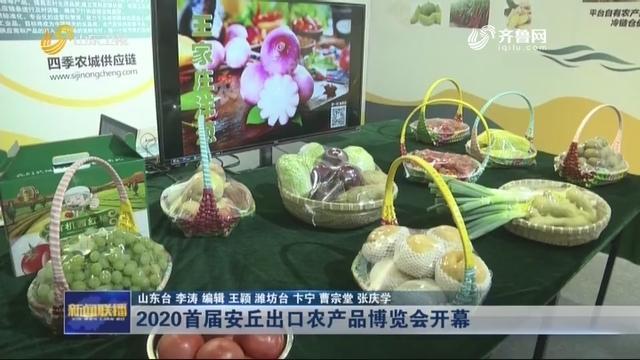 2020首届安丘出口农产品博览会开幕