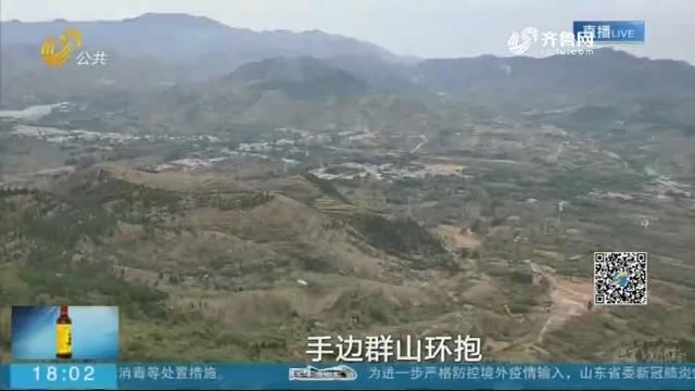 济南:灵岩大佛山火了 记者体验500米悬索桥