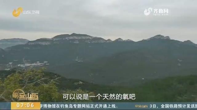 济南:灵岩大佛山火了?记者体验500米悬索桥