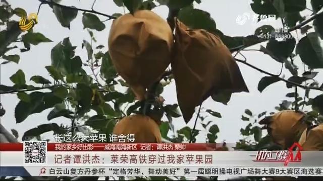 【我的家鄉好出彩——威海南海新區】記者譚洪杰:萊榮高鐵穿過我家蘋果園