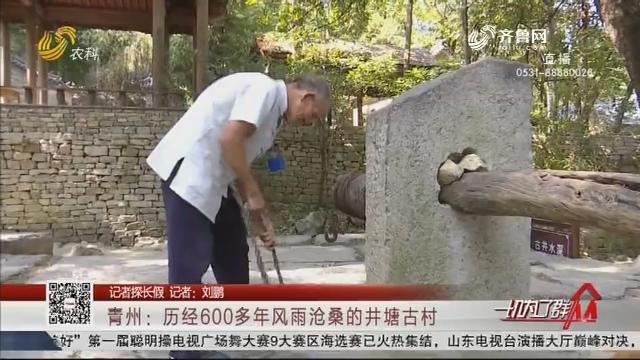 【记者探长假】青州:历经600多年风雨沧桑的井塘古村